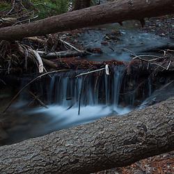 Limekiln Creek Detail, Limekiln State Park, Big Sur, California, US