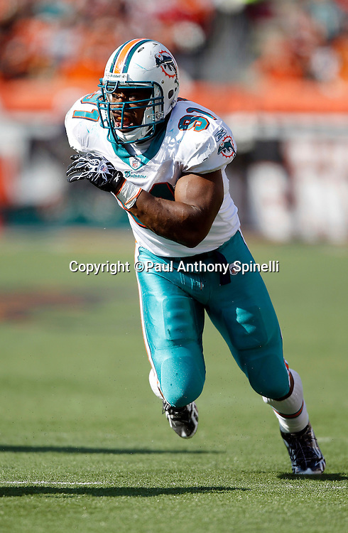 Miami Dolphins linebacker Cameron Wake (91) rushes the quarterback during the NFL week 8 football game against the Cincinnati Bengals on Sunday, October 31, 2010 in Cincinnati, Ohio. The Dolphins won the game 22-14. (©Paul Anthony Spinelli)