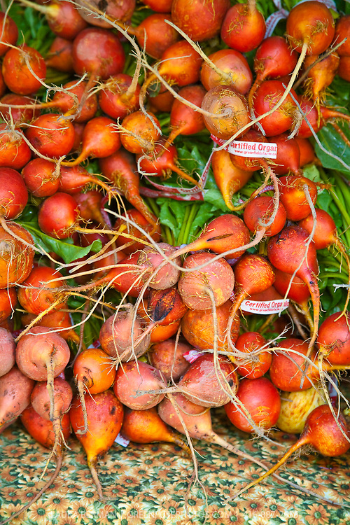 Organically grown golden beets at the farmers market.