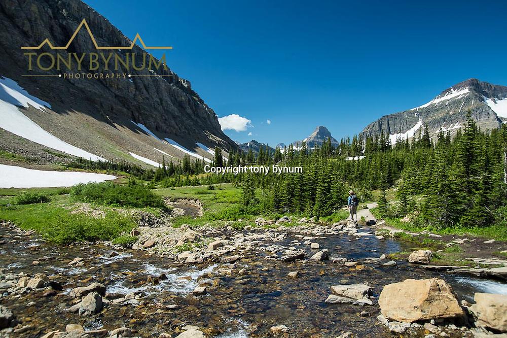 backpacking preston park glacier national park