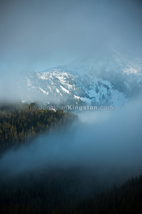Lifting fog reveals a snow capped mountain in BC.