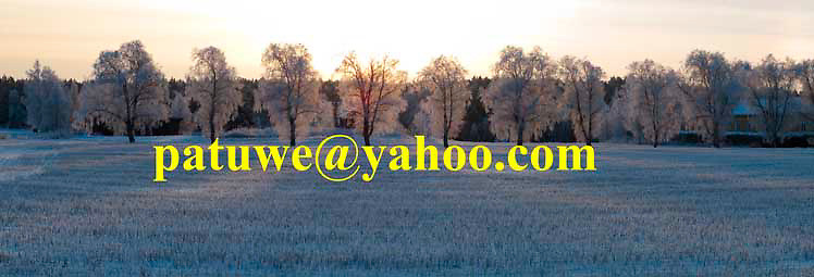 Panorama tranquil Finland winter landscape
