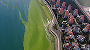 QINGDAO, CHINA - JULY 22: (CHINA OUT) <br /> <br /> An aerial view of the shoreline covered by a thick layer of green algae on July 22, 2016 in Qingdao, Shandong Province of China. <br /> ©Exclusivepix Media