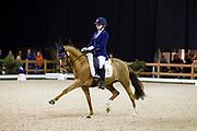 Lauren Neville - Morning Sky<br /> Indoor Brabant 2017<br /> © DigiShots