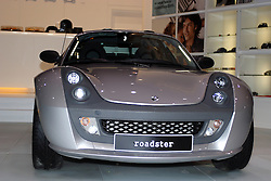 Think Roadster - Alternative Fuel Vehicle