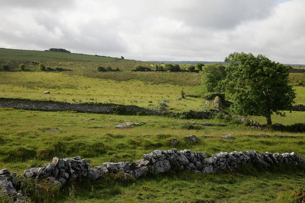 Landscape Burren Ireland