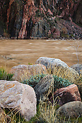 The Colorado River near Phantom Ranch. Grand Canyon National Park in Arizona.