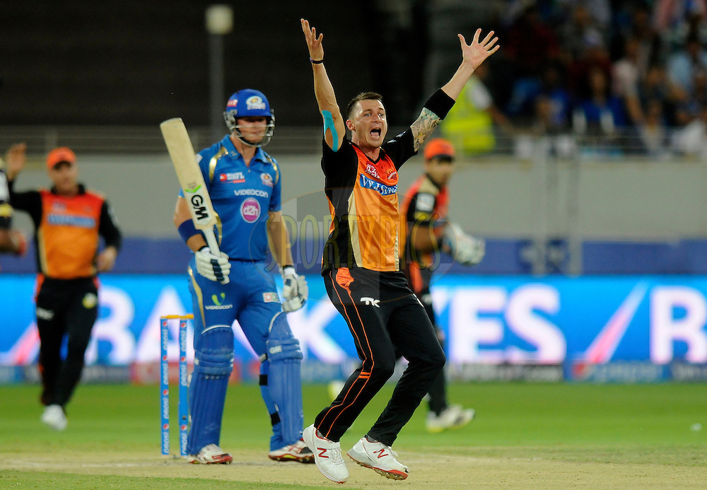Dale Steyn of the Sunrisers Hyderabad appeals unsuccessfully for the wicket of Corey Anderson of the Mumbai Indians during match 20 of the Pepsi Indian Premier League Season 2014 between the Mumbai Indians and the Sunrisers Hyderabad held at the Dubai International Stadium, Dubai, United Arab Emirates on the 30th April 2014<br /> <br /> Photo by Pal Pillia / IPL / SPORTZPICS