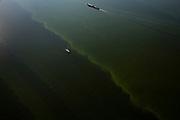 """Nederland, Noordoostpolder, Flevoland, 08-09-2009. Binnenvaartschip en zeiljacht op het IJsselmeer tussen beide polders. Het water ziet groen van de blauwalgen, de 'groene soep' of algenbloei is het resultaat van eutrofiëring (ten gevolge van de aanvoer van meststoffen uit de landbouw).Barge and yacht in the IJsselmeer. The water looks green becuase of the blue algae, the """"green soup"""" (algae bloom) is the result of eutrophication (caused by fertilizers coming from the agriculture).(toeslag); aerial photo (additional fee required); .foto Siebe Swart / photo Siebe Swart"""