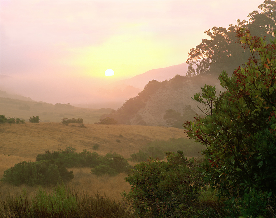 0603-4030LVT ~ Copyright: George H. H. Huey ~ The Central Valley at sunrise. Santa Cruz Island Preserve. The Nature Conservancy. California.