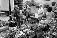 2015-5-9-Farmers Market