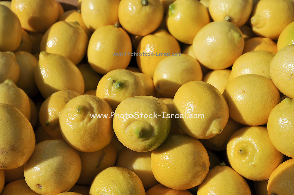 A pile of fresh lemons