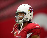 Sept. 30, 2012; Glendale, AZ, USA; Arizona Cardinals wide receiver Larry Fitzgerald (11) reacts at University of Phoenix Stadium. Mandatory Credit: Jennifer Stewart-US PRESSWIRE.