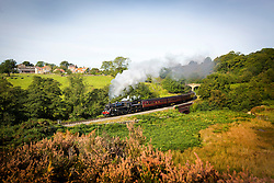 © Licensed to London News Pictures. 03/10/2016. Goathland UK. The 76084 Locomotive travels through the North Yorkshire Moors at Goathland this morning on the  North Yorkshire Moors Railway line on another fine day in Yorkshire. Photo credit: Andrew McCaren/LNP