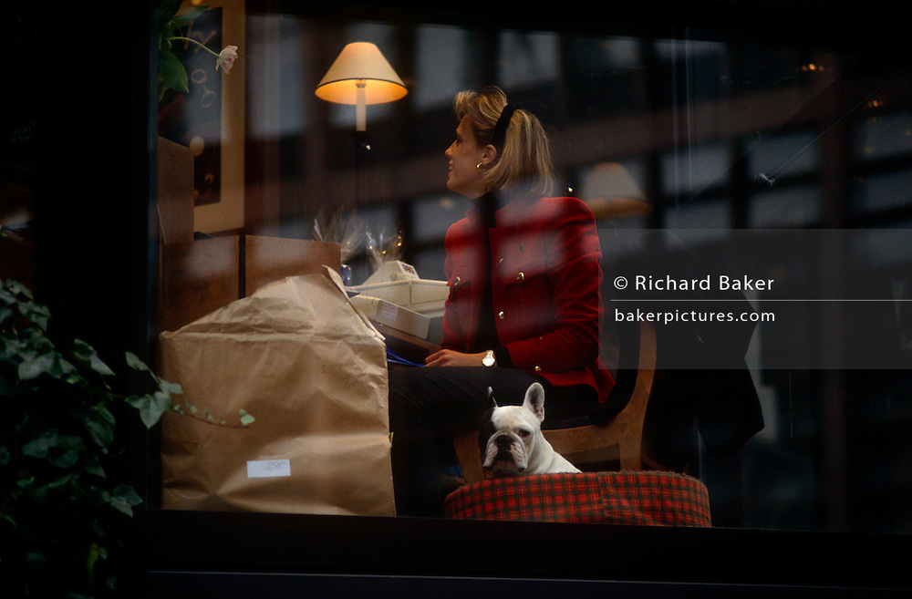 A career woman talks to an associate in her city office while her pet Bulldog sits patiently in its basket at the foot of the businesswoman's desk. Well-trained and disciplined the pooch looks outside life outside in the big city. Bulldog is the name for a breed of dog commonly referred to as the English Bulldog. Other Bulldog breeds include the American Bulldog, Olde English Bulldogge, Australian Bulldog and the French Bulldog. The Bulldog is a muscular heavy dog with a wrinkled face and a distinctive pushed-in nose.