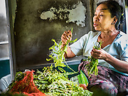26 OCTOBER 2015 - YANGON, MYANMAR: A woman sorts herbs she sells on the Yangon Circular Train. The Yangon Circular Railway is the local commuter rail network that serves the Yangon metropolitan area. Operated by Myanmar Railways, the 45.9-kilometre (28.5 mi) 39-station loop system connects satellite towns and suburban areas to the city. The railway has about 200 coaches, runs 20 times daily and sells 100,000 to 150,000 tickets daily. The loop, which takes about three hours to complete, is a popular for tourists to see a cross section of life in Yangon. The trains run from 3:45 am to 10:15 pm daily. The cost of a ticket for a distance of 15 miles is ten kyats (~nine US cents), and for over 15 miles is twenty kyats (~18 US cents).     PHOTO BY JACK KURTZ