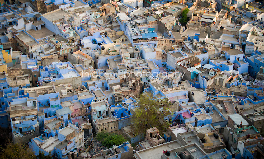 Overhead view of the blue city of Jodhpur, India.