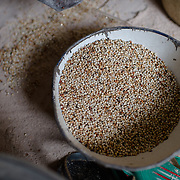 A bowl of sorgum waiting to be ground at a mill in the village of Kudo in Eastern Equatoria in South Sudan on 8 August 2014.