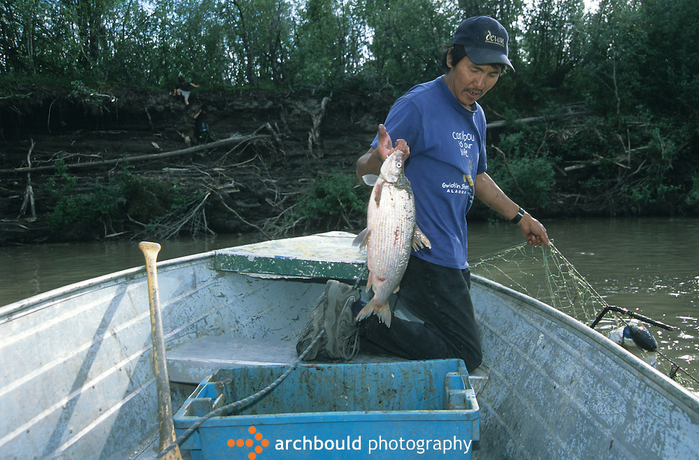 Fisherman holds up a fish, Inuvik