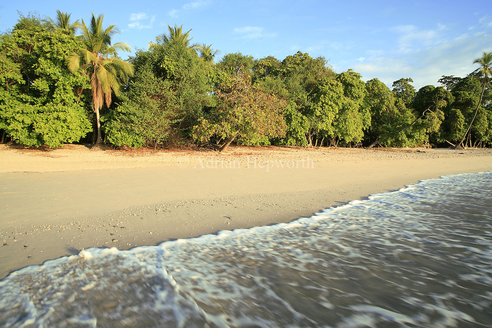 Manuel Antonio Beach, Manuel Antonio National Park, pacific coast, Costa Rica. <br /> <br /> For pricing click on ADD TO CART (above). We accept payments via PayPal.