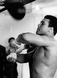 June 3, 2016 - File - MUHAMMAD ALI, the three time heavyweight boxing champion, has died at the age of 74. He had been fighting a respiratory illness. 'The Greatest' was the dominant heavyweight boxer of the 1960s and 1970s, Ali won an Olympic gold medal in Rome in 1960, captured the professional world heavyweight championship on three separate occasions, and successfully defended his title 19 times. PICTURED: Feb. 25, 1971 - Florida, U.S. - MUHAMMAD ALI in training. (Credit Image: © The Palm Beach Post via ZUMA Wire)
