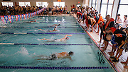 The Waltham High School Swimming & Diving team competes in the DCL meet at Atkinson Pool in Sudbury, Jan. 31, 2015.   (Wicked Local Photo/James Jesson)