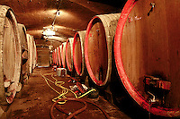 16 Sep 2007, Saint-Verand, France --- Wine Casks at Domaine du Vissoux Winery --- Image by © Owen Franken