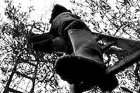 18/11/2010 Acquaviva delle Fonti, operaio su di una scala in legno mentre raccoglie le olive....La raccolta delle olive e la produzione dell'olio extravergine sono un rituale che si protrae da moltissimo tempo in Puglia, questo avviene solitamente nel periodo che va da novembre a dicembre, mentre il lavoro di preparazione e coltivazione si svolge lungo tutto l'arco dell'anno..La raccolta è seguita nella maggior parte dei casi, quando le olive non vengono vendute all'ingrosso, dalla molitura presso gli oleifici per la produzione di quello che da queste parti viene chiamato anche oro verde..
