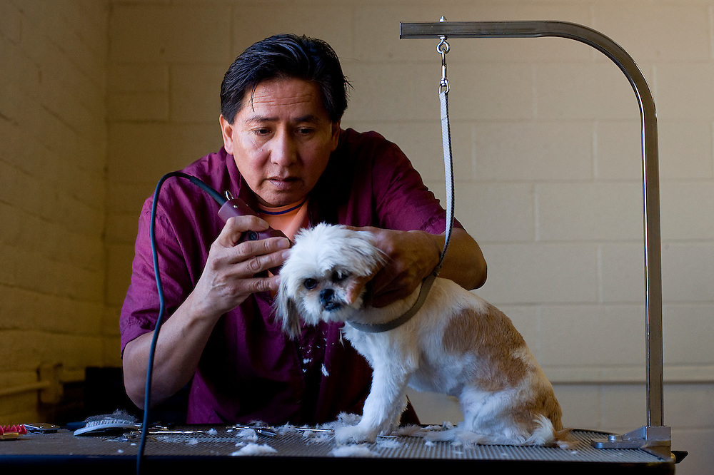 092109     Brian Leddy.Kevin Mitchell trims a small dog at his business of Shaggy Dog Pet Grooming and Supplies on Aztec Avenue. He recently relocated to the new location and offers a full range of pet grooming services.