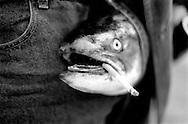 Fish Head in the pants having a smoke.