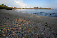 Conchal Beach, Guanacaste, Costa Rica. The beach is made up of millions of broken shells. <br />