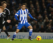 Brighton striker Anthony Knockaert during the Sky Bet Championship match between Brighton and Hove Albion and Brentford at the American Express Community Stadium, Brighton and Hove, England on 5 February 2016. Photo by Bennett Dean.