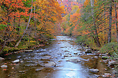 Great Smoky Mountains Images