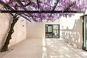 architecture, modern house, beautiful veranda with wisteria