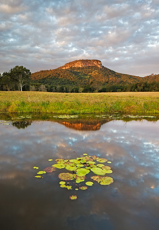 Mt Ninderry is my local iconic focal point and a good location for a last-minute photo shoot.