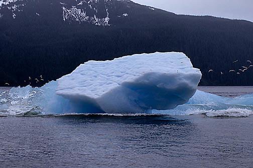 Alaska, Iceberg breaking.