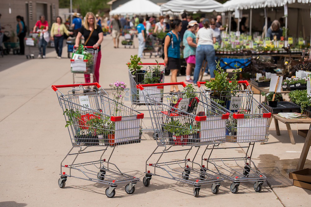 shopping cart plant sale