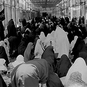 Women are praying. Shiraz, Iran.