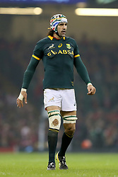 Nov. 29, 2014 - Cardiff, United Kingdom - Victor Matfield of South Africa - Autumn Internationals - Wales vs South Africa - Millennium Stadium - Cardiff - Wales - 29th November 2014 - Picture Simon Bellis/Sportimage.(Credit Image: © Sportimage/Sportimage/Cal Sport Media/ZUMAPRESS.com)