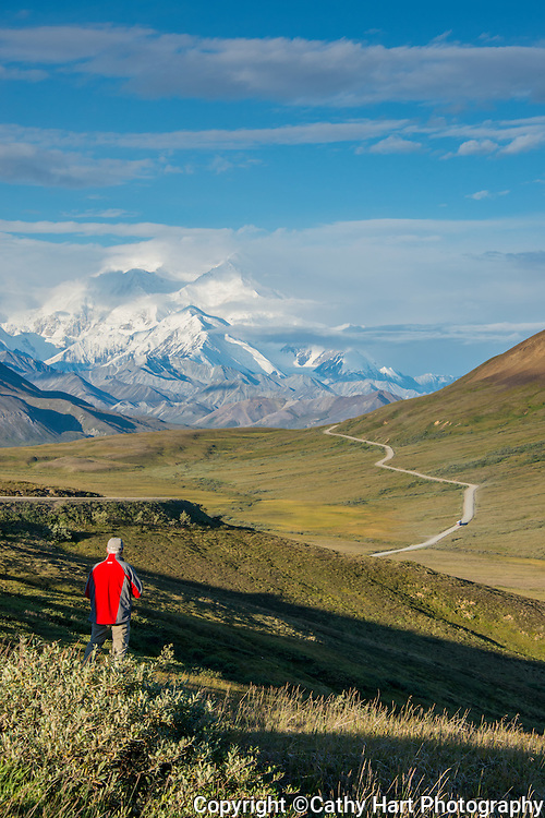 Man in red jacket enjoys the view of Mt McKinley in Denali National Park, Alaska in August.