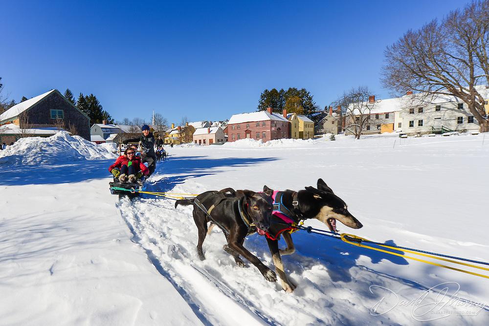 Dog Sled Rides at Strawbery Banke