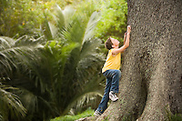 Boy Climbing Large Tree