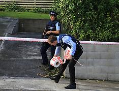 Auckland-Victim shot with hand gun, New Windsor