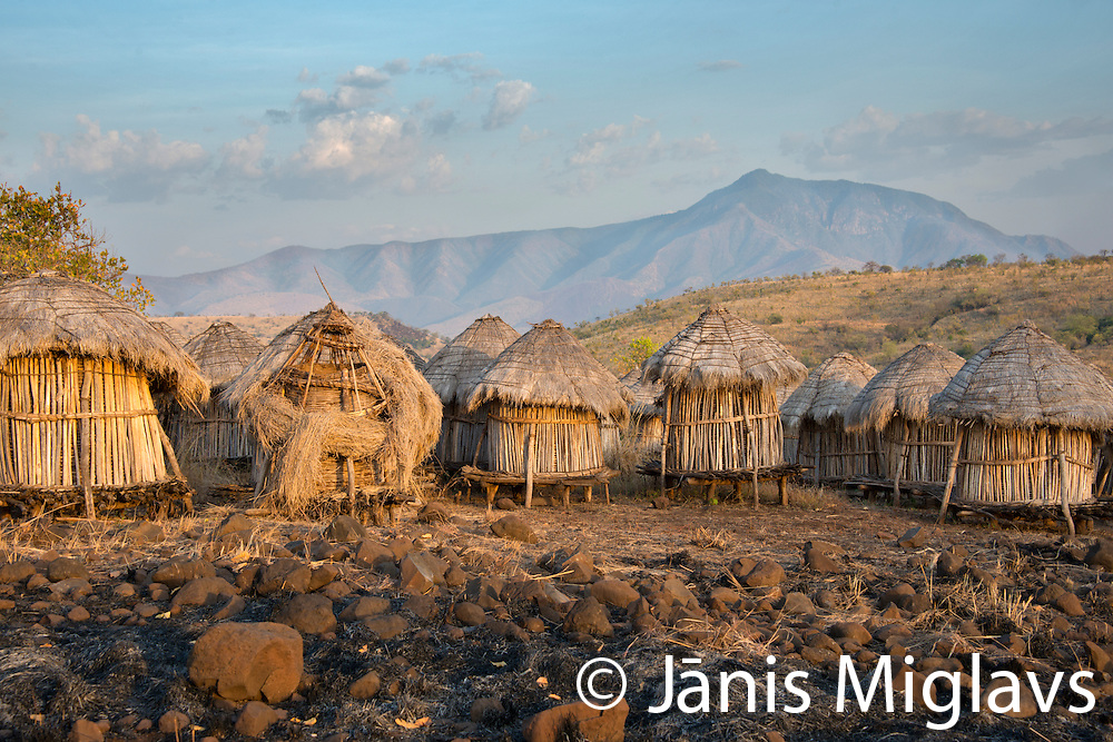 Storage buildings at Belle, a Mursi tribe village in Mago National Park, Omo Valley, Ethiopia, Africa.