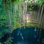 Because of their purity, cenotes have incredibly clear water that creates the illusion of floating in mid-air, making  them ideal for snorkeling, swimming, and scuba diving.