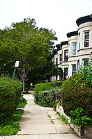 Prospect Lefferts Gardens