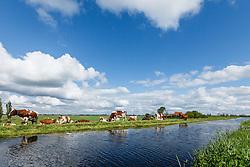 Zevenhoven, Nieuwkoop, Zuid Holland, Netherlands