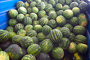 A lorry full of melons delivered to market.