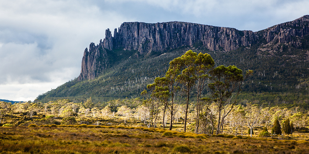 Mt Oakleigh from the Pelion Plains, Cradle Mountain - Lake St Clair National Park.