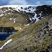 Hikers, Kahurangi Range, South Island, New Zealand. Photo by Jen Klewitz